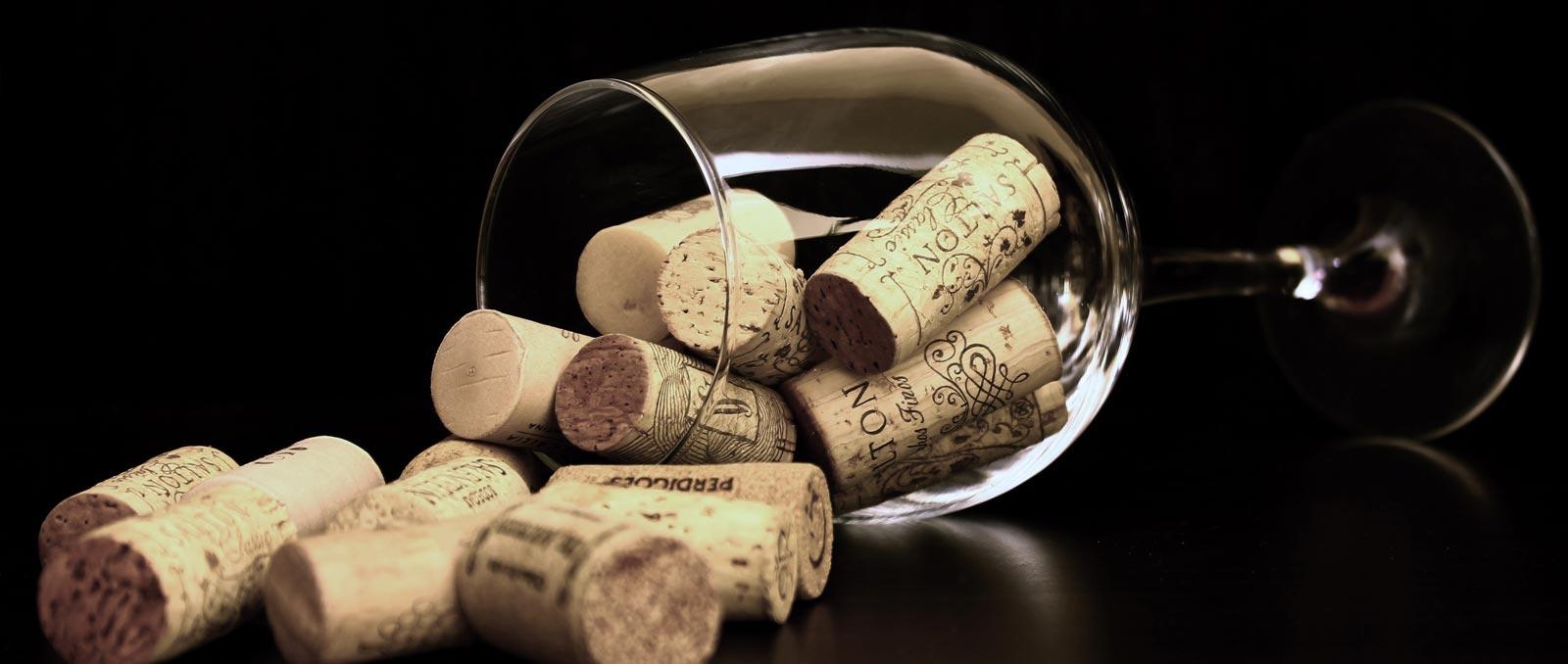 diferencias entre los vinos